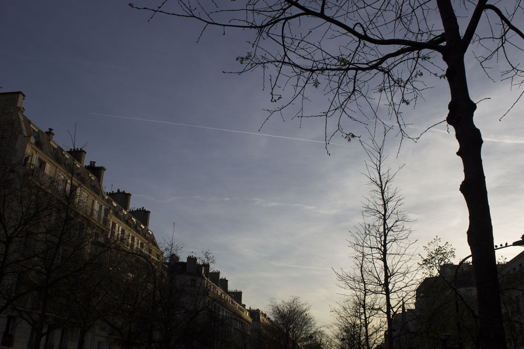 Paris Edit 10