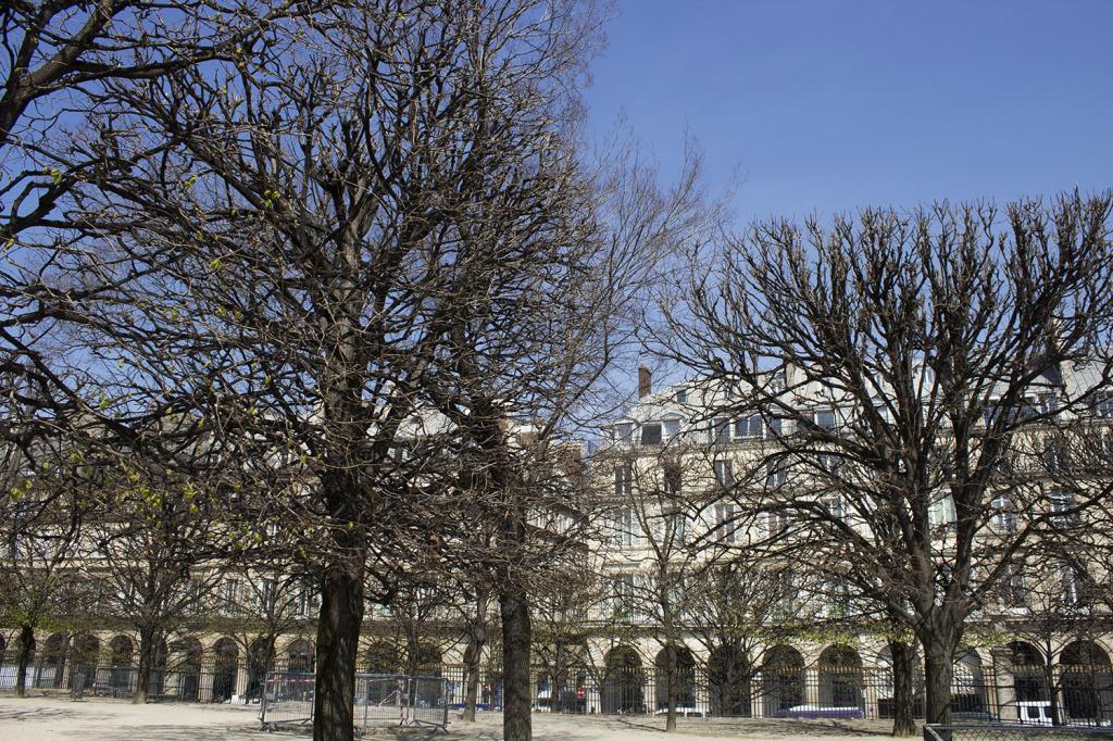 Paris Edit 2