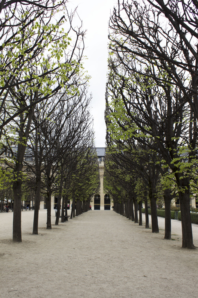 Paris Edit 3
